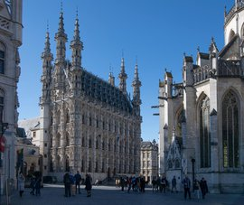 Landscape Leuven stadhuis1_preview_maxWidth_1920_maxHeight_1080_ppi_72.jpg